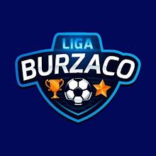 LIGA BURZACO icon