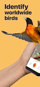 Picture Bird - Bird Identifier 2.6.2 (Premium)