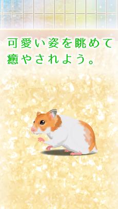 癒しのハムスター育成ゲームのおすすめ画像3