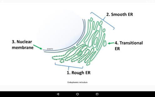 Cell Biology-101 1.80 Screenshots 8