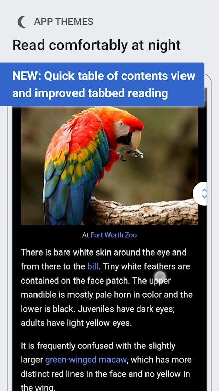Wikipedia Beta  poster 0