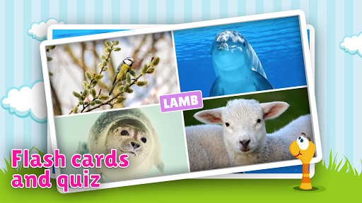 animal flashcard & sounds for kids & toddlers screenshot 2