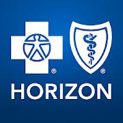 Horizon Blue