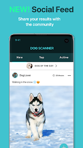 Dog Scanner Premium Apk– Dog Breed Identification (Mod/Unlocked) 4