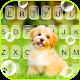 Cute Puppy Pet Keyboard Background Download on Windows