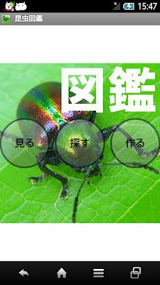 昆虫図鑑のおすすめ画像1