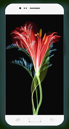 3D Flower Wallpaper 1.04 screenshots 4