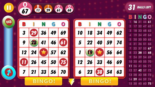 Bingo Classic Game - Offline Free 2.6 screenshots 11