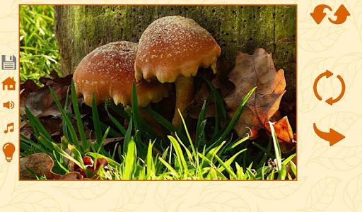 Puzzles autumn 1.2.5 screenshots 8