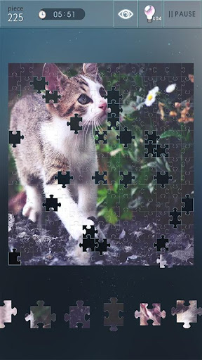 Jigsaw Puzzle World  Screenshots 11