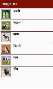 Animal Information in Hindi
