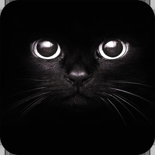 Black Wallpaper Aplikasi Di Google Play