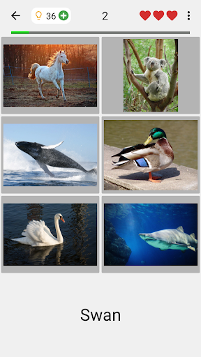 Easy Pictures and Words - Photo-Quiz with 5 Topics 3.1.0 screenshots 2