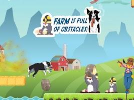 CollieRun - Free Dog game agility training border