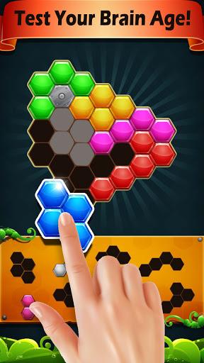 Block Hexa Puzzle 2021 screenshots 6