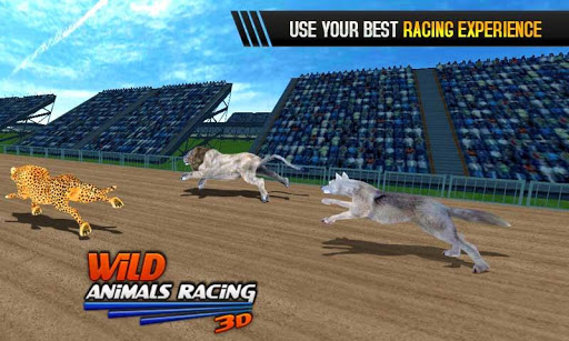 Wild Animals Racing 3D 3.9 screenshots 5