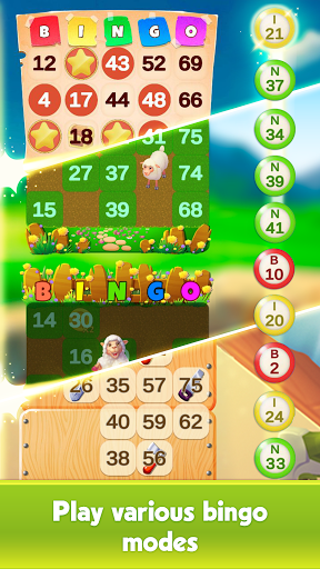 Bingo: Love in Montana 0.6.4 screenshots 18