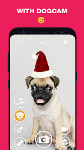 DogCam – Dog Selfie Filters and Camera 2
