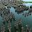 Medieval Naval Ops