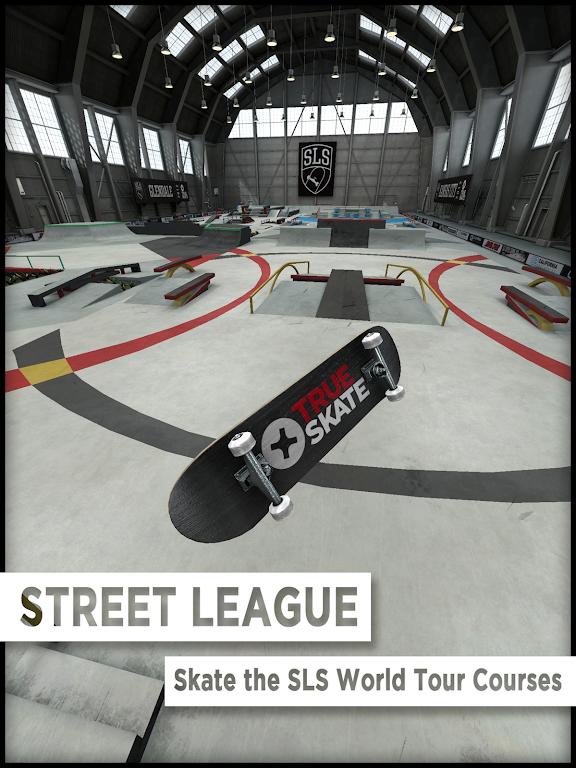 True Skate  poster 4