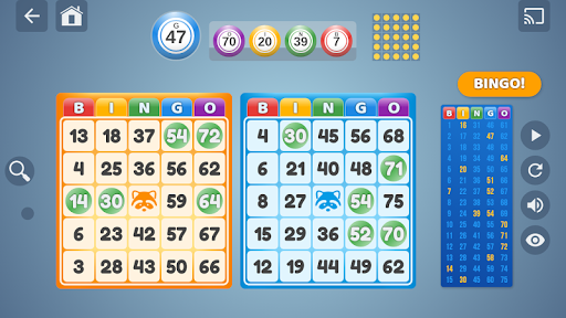 Bingo Set  screenshots 1