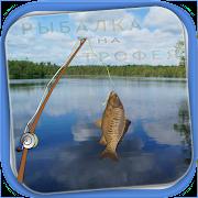 Рыбалка на трофея