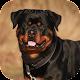 Rottweiler Dog Life Simulator Download on Windows