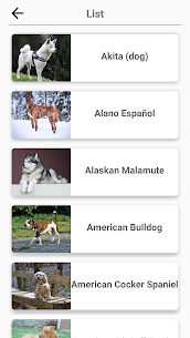 Dog Breeds – Quiz about all dogs of the world! 4