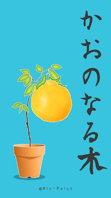 かおのなる木のおすすめ画像2