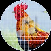 Rooster Sounds ~ Sboard.pro