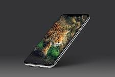 screenshot of 🐯 Leopard Wallpaper 🐆