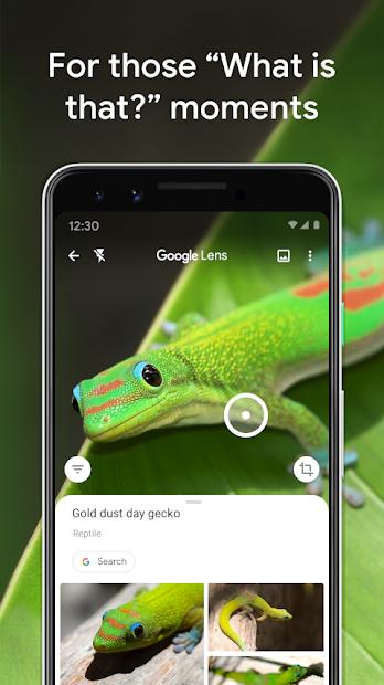 Google Lens screenshot 6