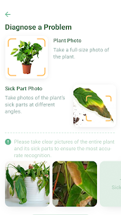 NatureID Mod Apk: Identify plants, flowers, trees & leaves (Paid Features Unlocked) 4