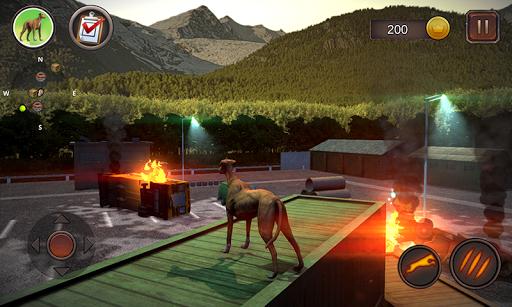 Greyhound Dog Simulator android2mod screenshots 6