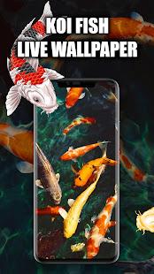Koi Fish Live Wallpaper | Koi Fish Wallpapers