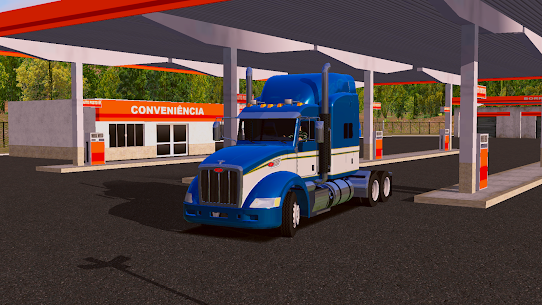 World Truck Driving Simulator 5
