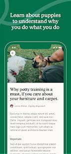 Zigzag Puppy Training