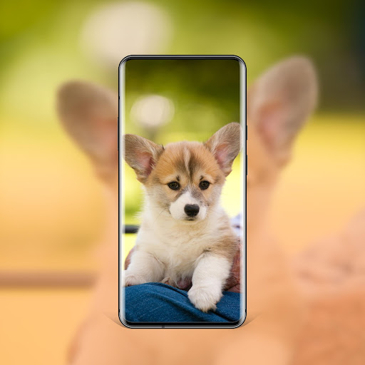 best dog wallpapers and themes all breeds screenshot 2