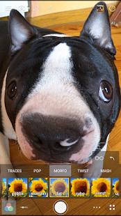 Cameringo+ Filters Camera Screenshot