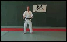 Kyokushin - Leg Techniquesのおすすめ画像5