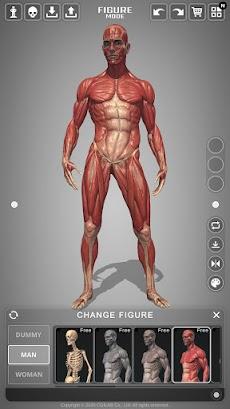 アクション解剖学 - アーティストのための解剖学ポーズアプリのおすすめ画像4