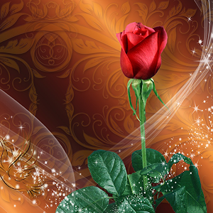 Roses Live Wallpaper  Rose Backgrounds