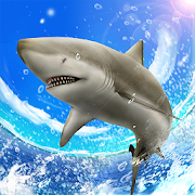 Wild Shark Fishing