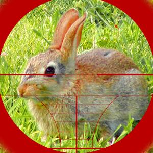 Sniper Rabbit Hunting 3D