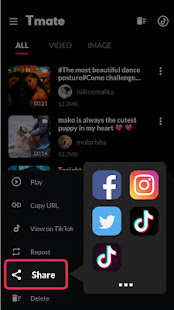 Video Downloader for TikTok No Watermark - Tmate