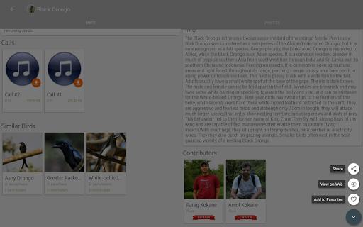 Indian Birds android2mod screenshots 14