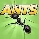 Pocket Ants: Simulador de Colônia para PC Windows