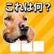 ズームクイズ:クローズアップ画像ゲーム