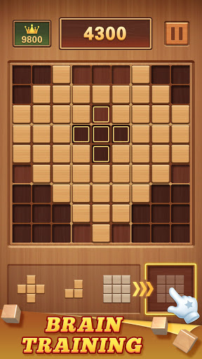 Wood Block 99 - Wooden Sudoku Puzzle modavailable screenshots 21