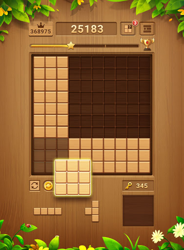 Wood Block Puzzle - Free Classic Block Puzzle Game 2.1.0 screenshots 24